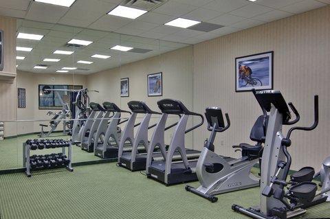 Holiday Inn Hotel And Suites Windsor Ambassador Bridge - Fitness Center