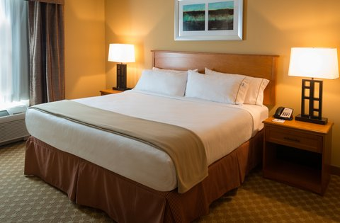 Holiday Inn Express & Suites CHICAGO WEST-ROSELLE - Suite
