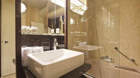 انتركوتيننتال جنيف - Guest Bathroom