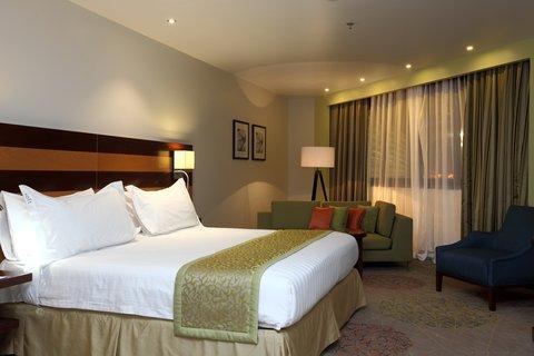 فندق هوليدي ان - Guest Room