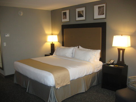 Holiday Inn Hotel & Suites EAST PEORIA - Single Bed Guest Room