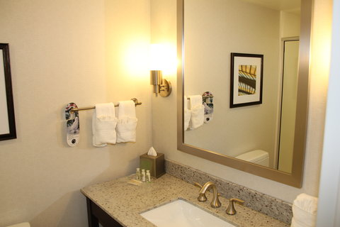 Holiday Inn Hotel & Suites EAST PEORIA - Guest Bathroom