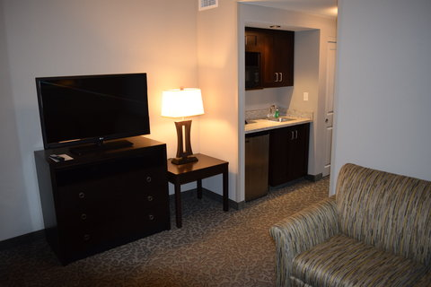 Holiday Inn Hotel & Suites EAST PEORIA - Junior Suite