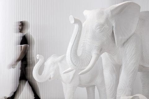 Myconian Imperial Resort & Thalasso Spa Center - Elephants