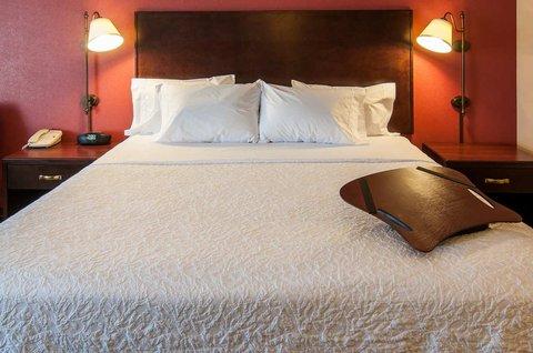Hampton Inn Boise - Airport - Standard Guest Room - 1 King Bed