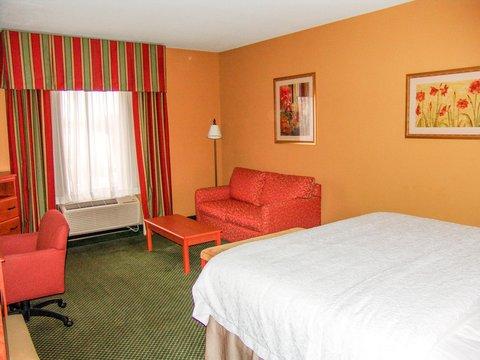 Hampton Inn Garden City - King Bed Study