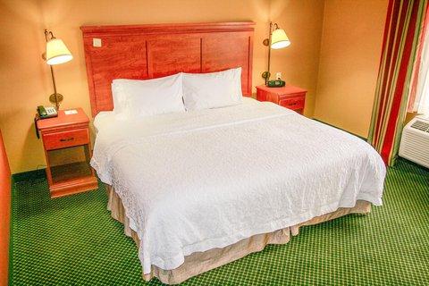 Hampton Inn Garden City - King Room