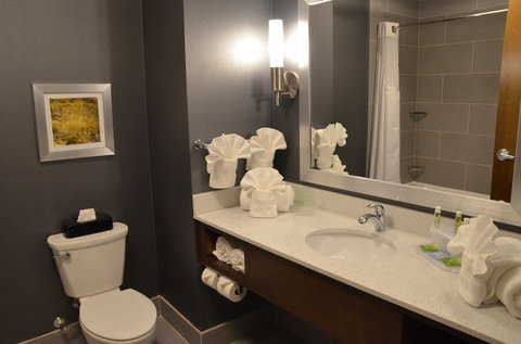 Holiday Inn Express & Suites ALBANY - Bathroom Amenities