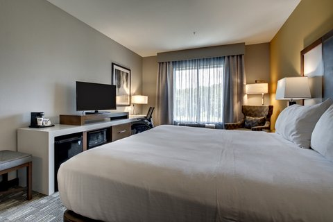 Holiday Inn Express & Suites ALBANY - Guestroom with King Bed