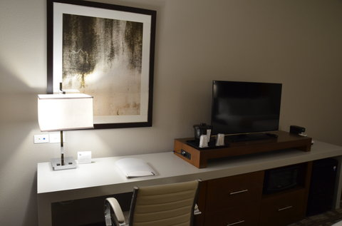 Holiday Inn Express & Suites ALBANY - Room Feature