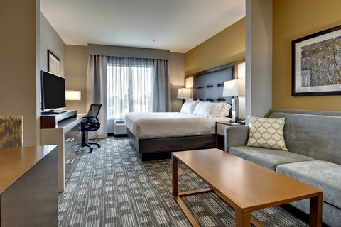 Holiday Inn Express & Suites ALBANY - King Suite