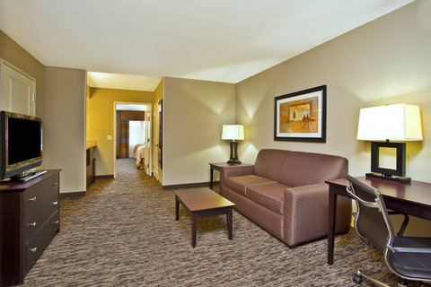Holiday Inn Hotel & Suites GREEN BAY STADIUM - Suite
