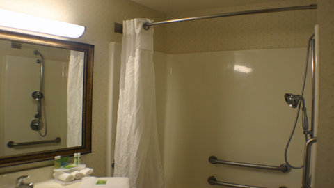 Holiday Inn Express Hotel & Suites Columbus Expo Center - Bathroom for guests with disabilities
