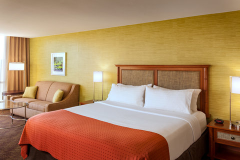 Holiday Inn AUSTIN-TOWN LAKE - Relax and recharge in one of our spacious King Rooms