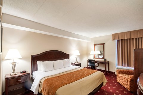 Comfort Inn Shady Grove - Gaithersburg - Rockville - Guest Room