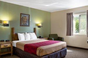 Room - Econo Lodge Custer