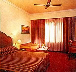 Hotel Vikram - Double Room