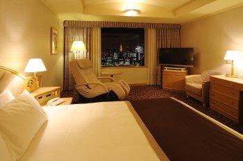 Photo 6 New Hankyu Hotel Tokyo
