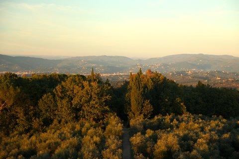 Villa Mangiacane - Landscape