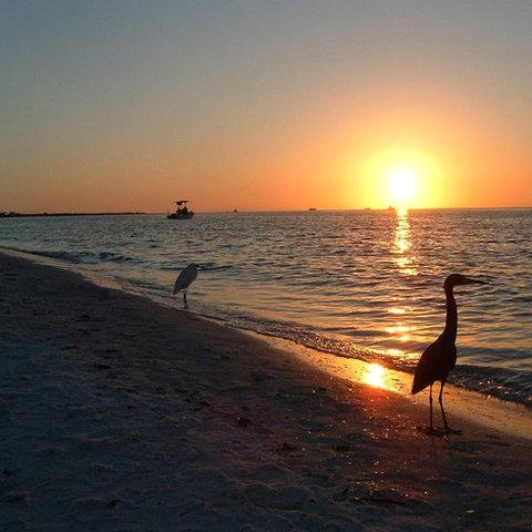Gulfview Manor Resort - Beachsunset