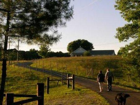 Wolf Creek Farm - Ararat, VA