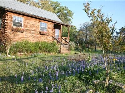 9e Ranch Bed And Breakfast Log Cabins
