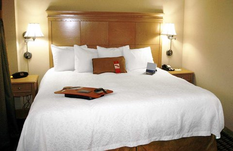 Hampton Inn - Suites Albany-Downtown - King Whirlpool Suite