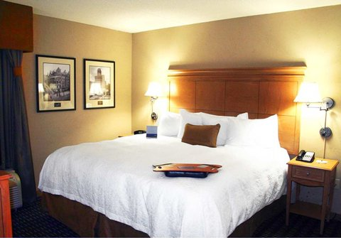Hampton Inn - Suites Albany-Downtown - King Study