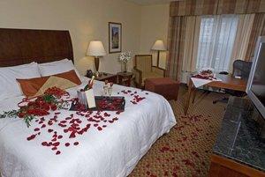 Room - Hilton Garden Inn Albany Medical Center
