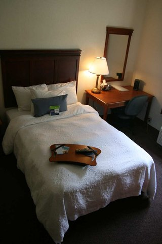 Hampton Inn Albany-Wolf Road - Accessible 1 Double Bed Room