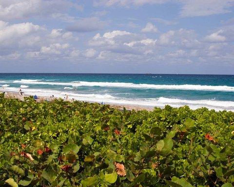 Hampton Inn Boca Raton - Boca Raton Seaside