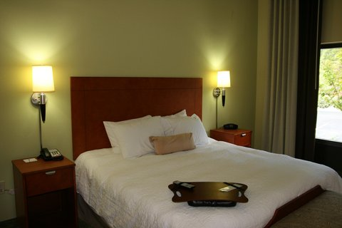 Hampton Inn - Suites Birmingham Airport Area AL - King Accessible Studio