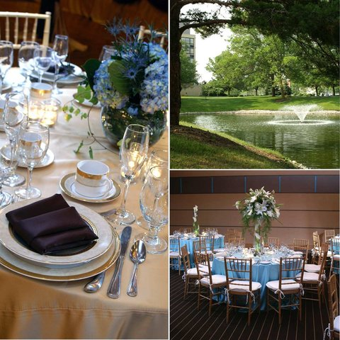 DoubleTree by Hilton Chicago - Arlington Heights - Doubletree Weddings