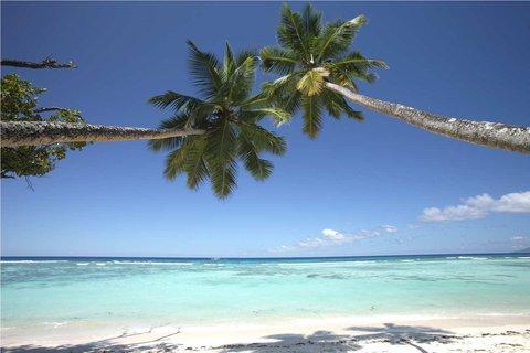 Hilton Seychelles Labriz Resort And Spa - Beach Palm Trees
