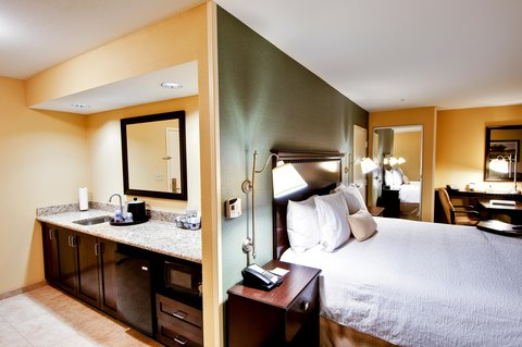 Hampton Inn & Suites Mt. Vernon/Belvoir-Alexandria South - King Studio Suite