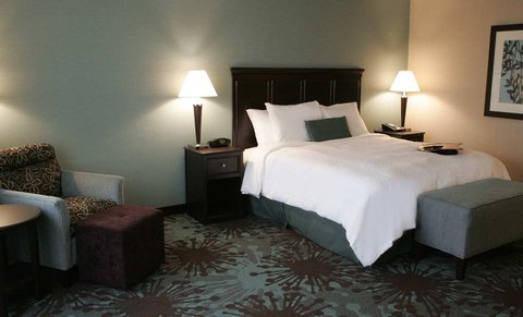 Hampton Inn by Hilton Toronto Airport Corporate Centre - 1 King Bed Non-Smoking