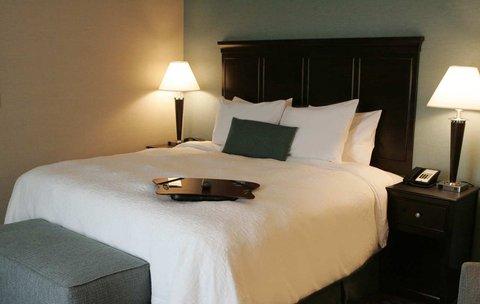 Hampton Inn by Hilton Toronto Airport Corporate Centre - 1 King Study w  Sofa Bed