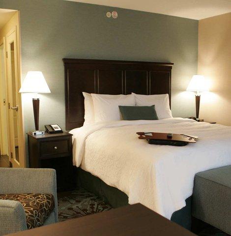 Hampton Inn by Hilton Toronto Airport Corporate Centre - 1 King Bed