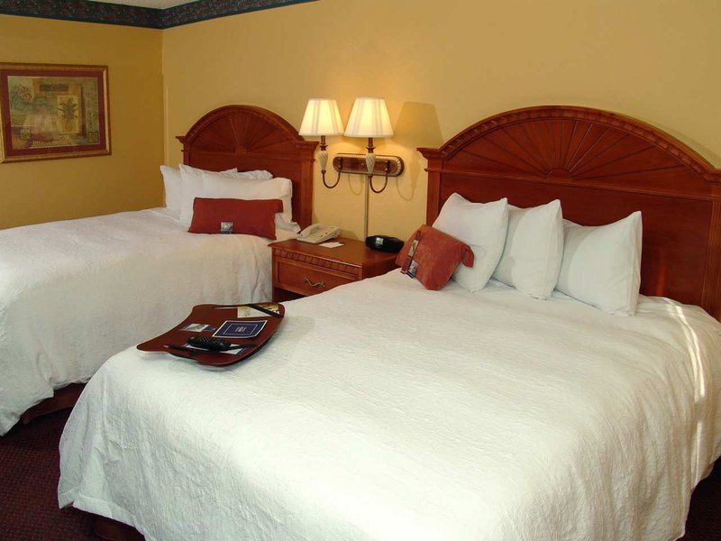 Hampton Inn Orlando/Florida Mall Вид в номере