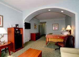 Room - Holiday Inn Express Temple Terrace