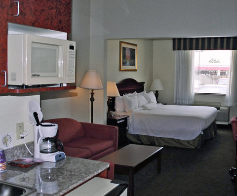 Holiday Inn Express & Suites GREENVILLE - Mini Suite
