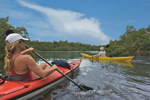 DoubleTree Suites by Hilton Naples - Paddle the Mangroves
