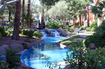 Westgate Flamingo Bay at Las Vegas - Las Vegas, NV