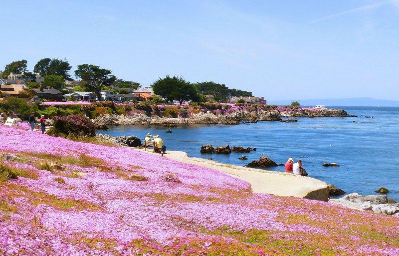 Sea Breeze Inn - Pacific Grove, CA