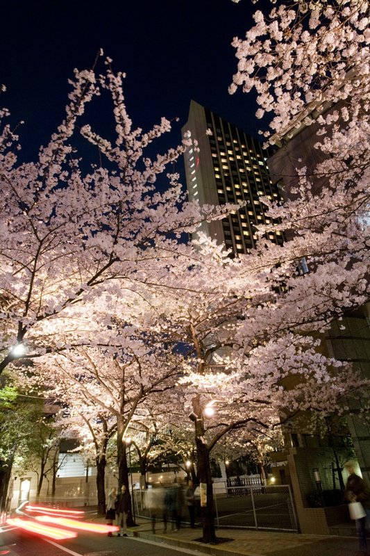InterContinental Ana Ana Tokyo Vista exterior