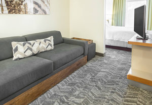 Room - SpringHill Suites by Marriott Brookhollow Houston