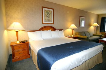 Best Western Main Street Inn - Room