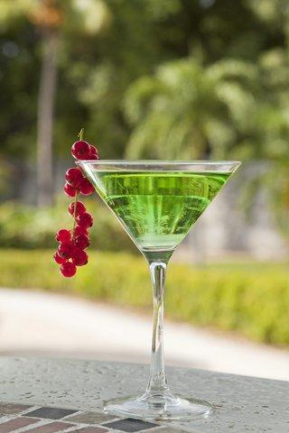 Curacao Hilton Hotel - Captain Bligh s Bar - Martini