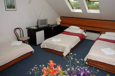 Fortuna Hotel - Guest Room