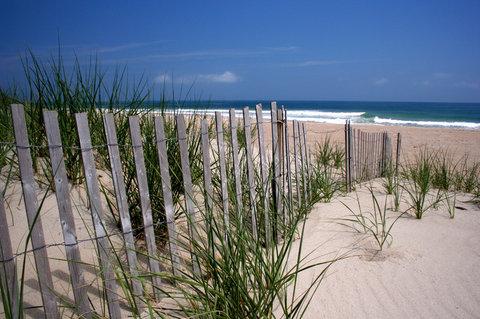 Ramada Plaza Nags Head Oceanfront - Beach dunes